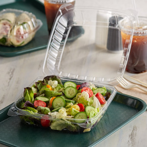 """9"""" Clear hinged Plastic takeout container 2pk/125"""