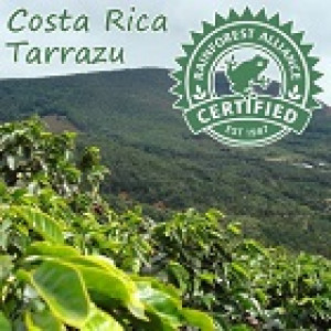 Hyman Smith Coffee Costa Rican Tarrazu