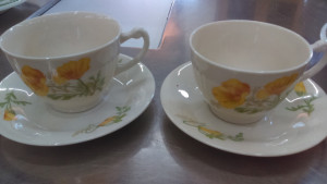 Syracuse China California Poppy cup & saucer