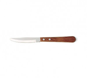 Steak Knife, 2dz/box stainless steel blade