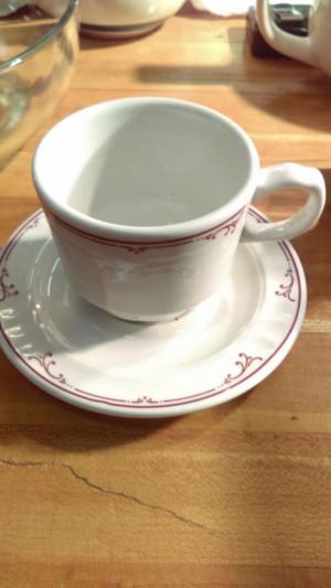 Shenango China Ravenna Cup & Saucer