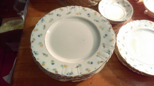 "Suzanne 10"" Dinner Plate"