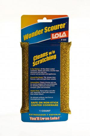 Wonder Scourer 1 piece Cleans w/o Scratching