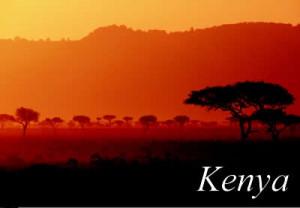 Hyman Smith Coffee Kenya AA