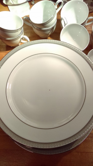 "Mikasa Platinum Crown 10.75"" Dinner Plate"